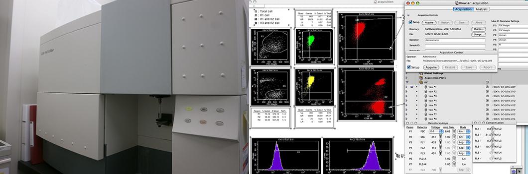 FACSCalibur(BD)2レーザー4カラーFACSシステム